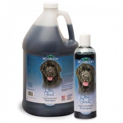 Bio-Groom Ultra Black Shampoo