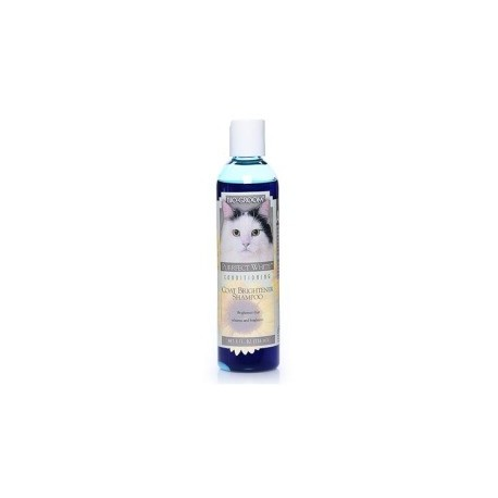 Bio-Groom Purrfect White shampoo