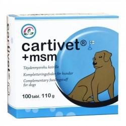 Cartivet + msm 100tabl.