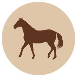 Fanimal jauhettu hevonen