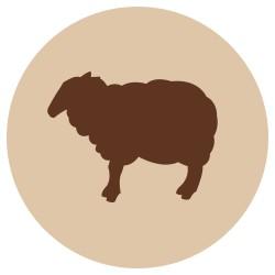 Fanimal jauhettu lammas