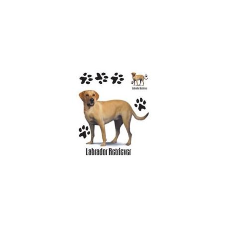 Keltainen Labradorinnoutaja